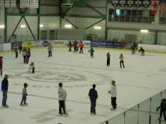 public skate2011 (1)